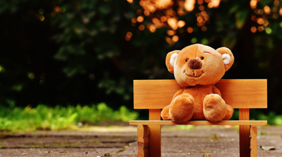 Banco con un oso de peluche... ¿que mejor público?